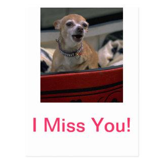 Barking Chihuahua Postcard