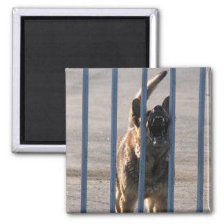 Barking dog refrigerator magnet
