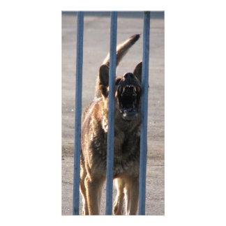 Barking dog photo card