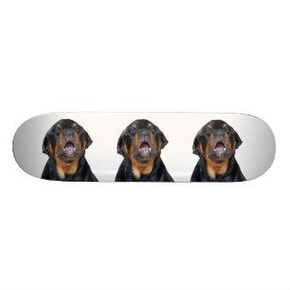 Barking Rottweiler Skateboard