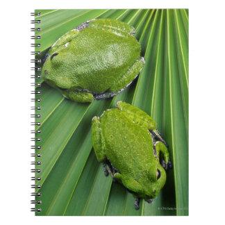 Barking Tree Frog (hyla gratiosa) Notebook
