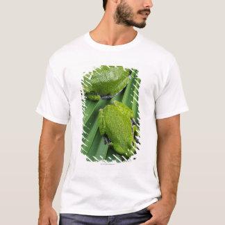 Barking Tree Frog (hyla gratiosa) T-Shirt
