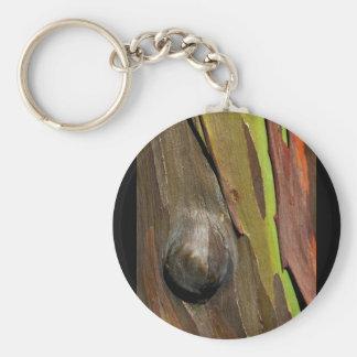 barknot llavero redondo tipo pin