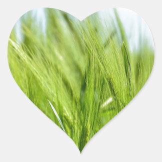 barley-897 pegatina en forma de corazón