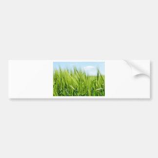 barley-897 pegatina para auto