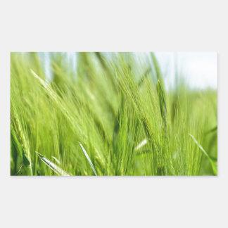 barley-897 pegatina rectangular
