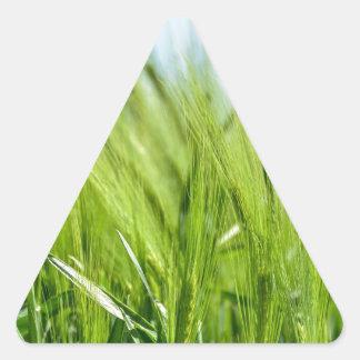 barley-897 pegatina triangular
