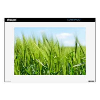 barley-897 skin for laptop