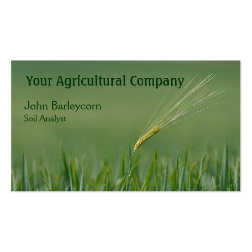 Barley business card template