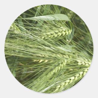 Barley Field Classic Round Sticker
