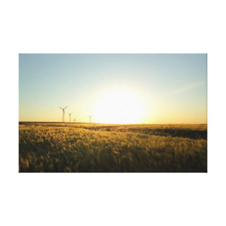 Barley Field Gallery Wrap Canvas