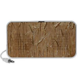 Barley Field iPod Speakers