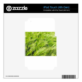 barley iPod touch 4G skin