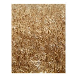 Barley Letterhead