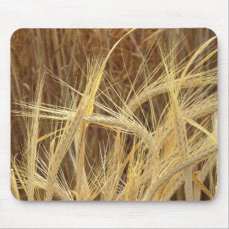 Barley Mouse Pad