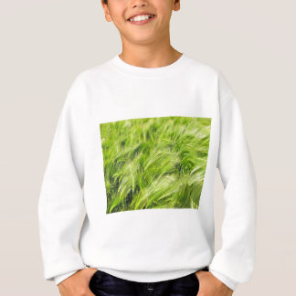 barley sweatshirt