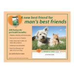 BarleyLife para la postal de los mascotas
