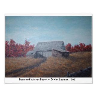 "Barn and Winter Beech 14"" x 11"" Photograph"
