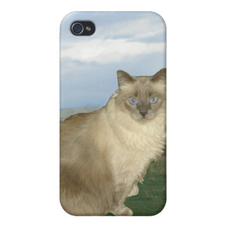 Barn cat cases for iPhone 4