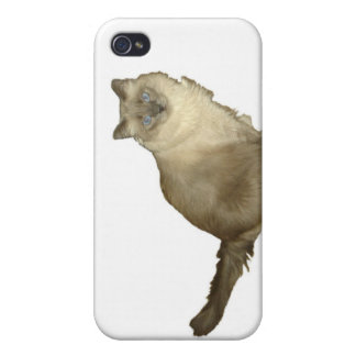 Barn cat covers for iPhone 4
