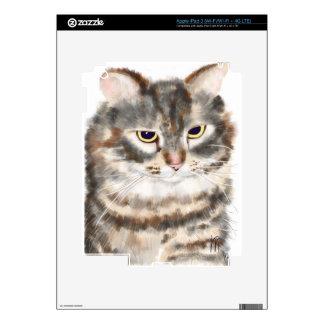 Barn Cat iPad 3 Skin
