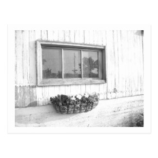 Barn Door Window/Black and White Photography Postcard