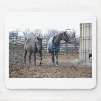 Barn Farm Horse Buddies Mouse Pad