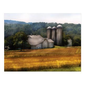 Barn - Home on the range Postcard