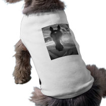 Barn Horse/Black and White Photography Tee
