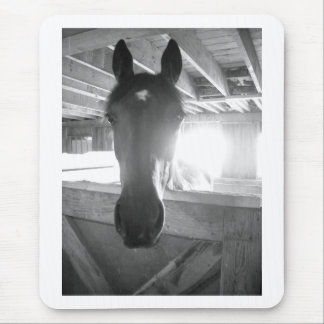 Barn Horse/Black & White Photography Mouse Pad