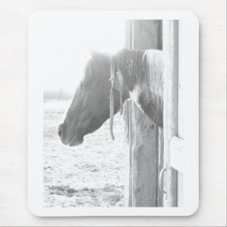 Barn Horse in Black and White Photography Mouse Pad
