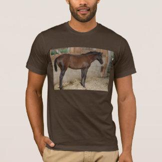 Barn Horse/Pony T-Shirt