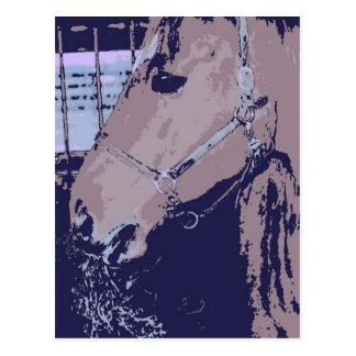 Barn Horse Pop Art Postcard