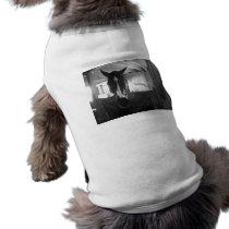 Barn Horse Shirt
