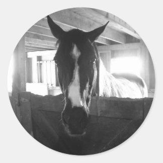 Barn Horse Round Stickers