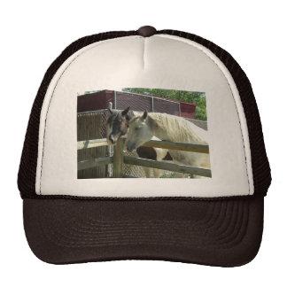 Barn Horses Trucker Hat