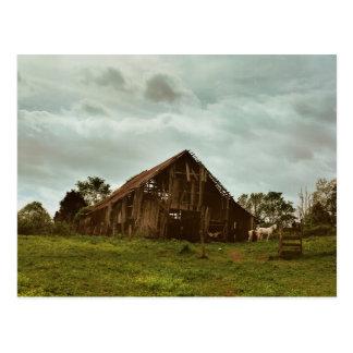 Barn in the Morning Postcard