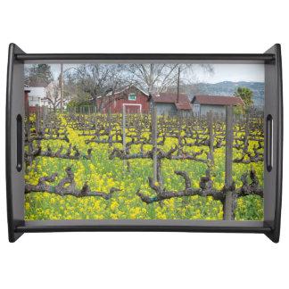 Barn In The Vineyard Food Tray