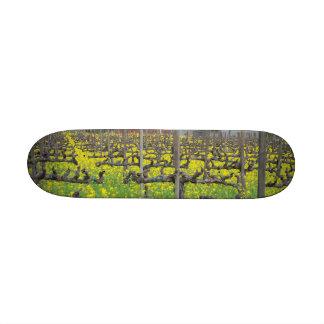 Barn In The Vineyard Skate Decks