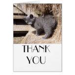 Barn kitty card