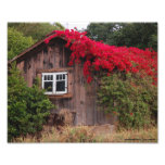 Barn of color photograph