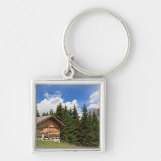 barn on Alpine pasture Keychain