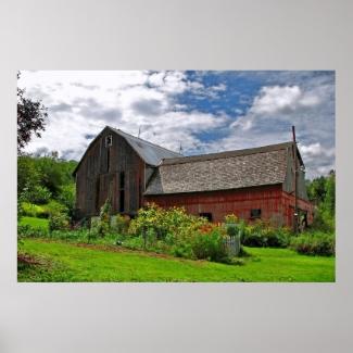 Barn on Sunny Summer Day