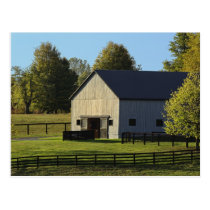 Barn on thoroughbred horse farm at sunrise, postcard