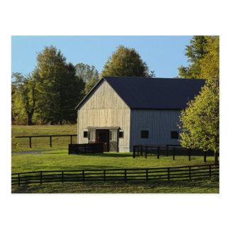 Barn on thoroughbred horse farm at sunrise, postcard