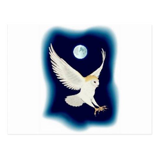 barn-owl-1 tarjeta postal