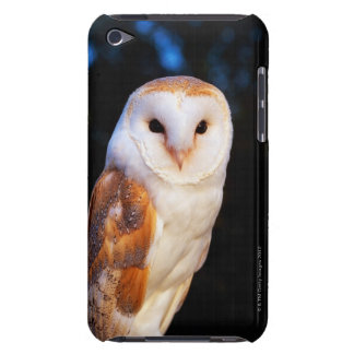 Barn Owl 2 iPod Case-Mate Case