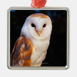 Barn Owl 2 Ornaments