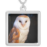 Barn Owl 2 Silver Plated Necklace