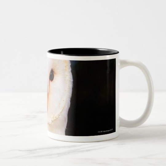 Barn Owl 2 Two-Tone Coffee Mug